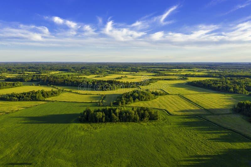 Vue aérienne supérieure des champs et des prés verts en été Paysage abstrait avec des lignes des champs, de l'herbe, des arbres,  photos stock