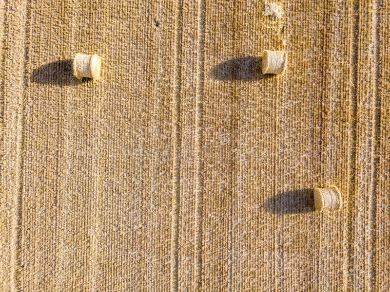 Vue aérienne sur des meules de foin sur un champ de blé pendant la récolte photo libre de droits