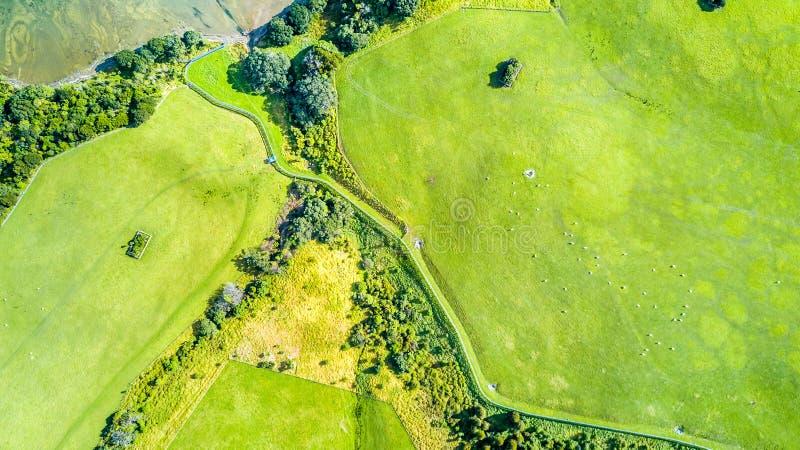 Vue aérienne sur des terres cultivables sur le rivage du port ensoleillé Péninsule de Whangaparoa, Auckland, Nouvelle-Zélande image stock