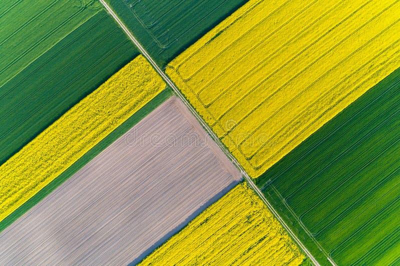 Vue aérienne sur le gisement de colza photos stock