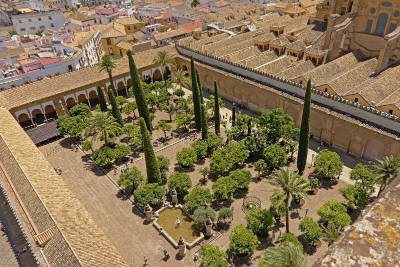 Vue aérienne sur le patio des arbres oranges de la mosquée de cathédrale de Cordoue i photo libre de droits