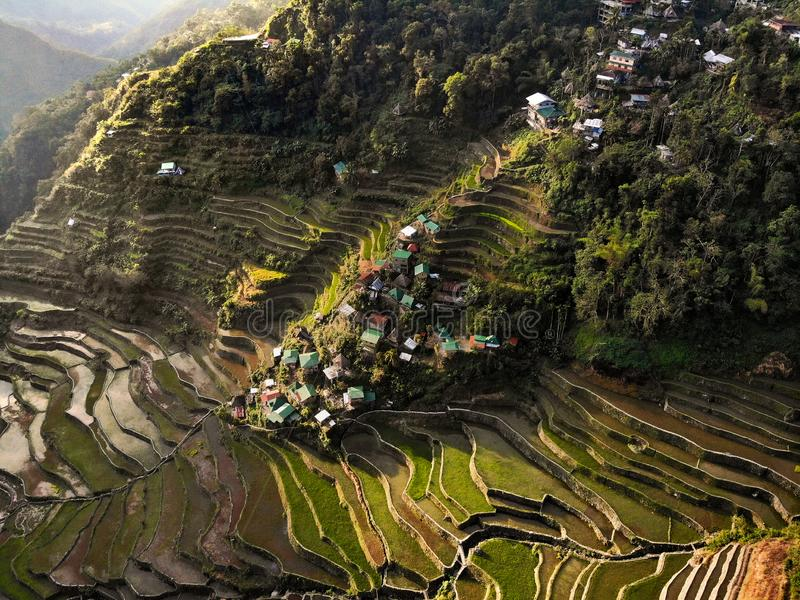 Vue aérienne - terrasses de riz de Batad - les Philippines images stock
