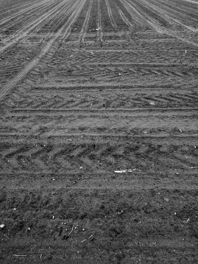 Vue agricole Regard artistique en noir et blanc photo libre de droits