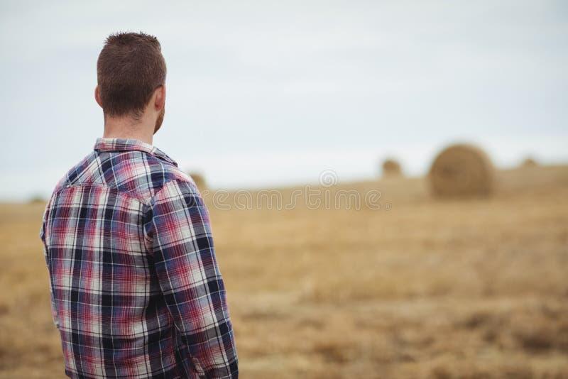 Vue arrière d'agriculteur se tenant dans le domaine photographie stock libre de droits
