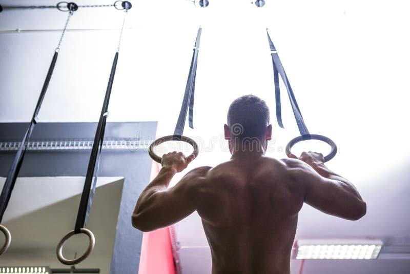 Vue arrière d'homme musculaire faisant la gymnastique d'anneau image libre de droits