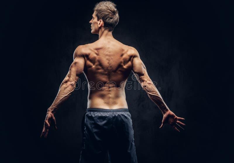 Vue arrière d'homme sans chemise avec les cheveux élégants et l'ectomorphe musculaire posant sur le fond texturisé foncé photo stock