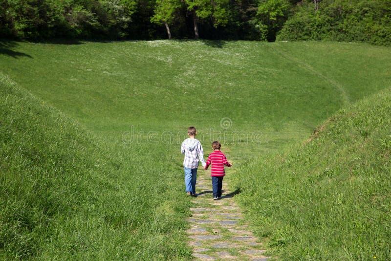 Vue arrière de deux petits garçons tenant des mains et marchant par le champ vert vers la forêt image stock