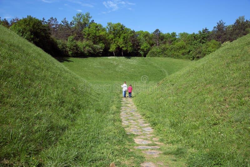 Vue arrière de deux petits garçons tenant des mains et marchant par le champ vert vers la forêt photos libres de droits