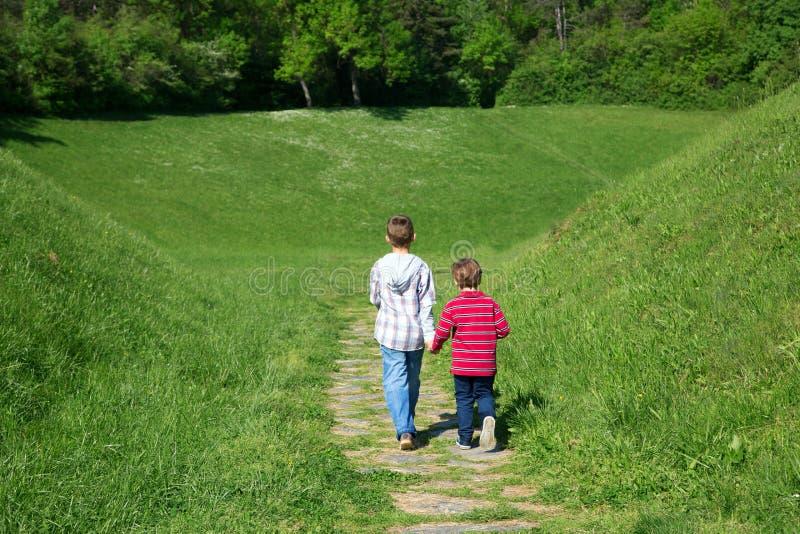 Vue arrière de deux petits garçons tenant des mains et marchant par le champ vert vers la forêt photo libre de droits