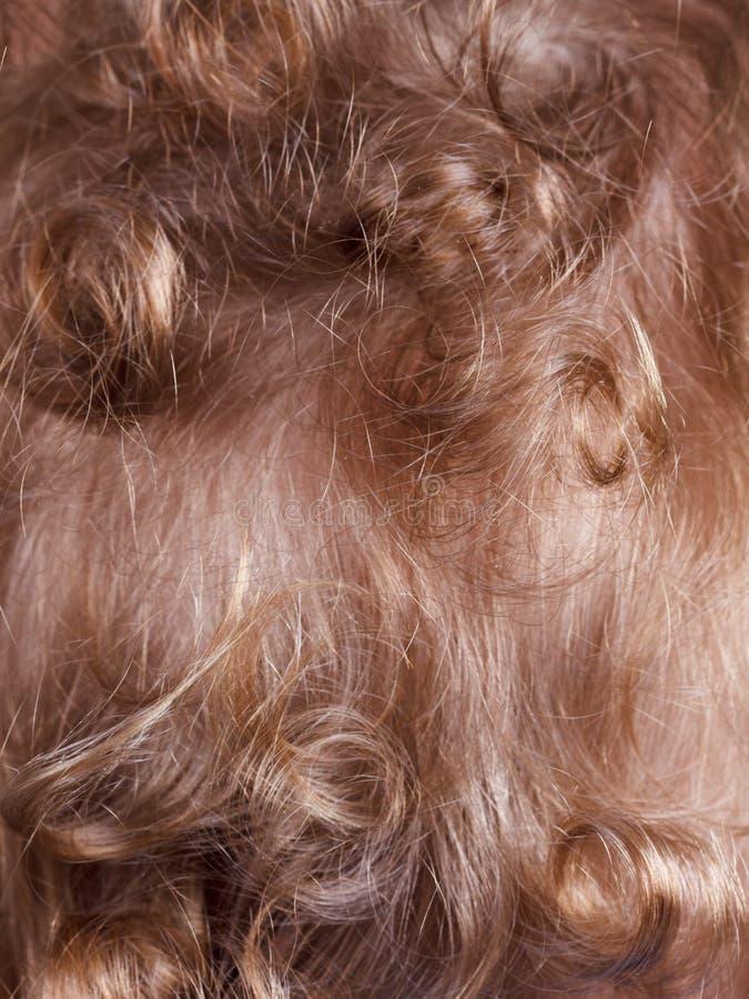 Vue arrière de garçon rouge bouclé blond de cheveux de fond, texture photos stock