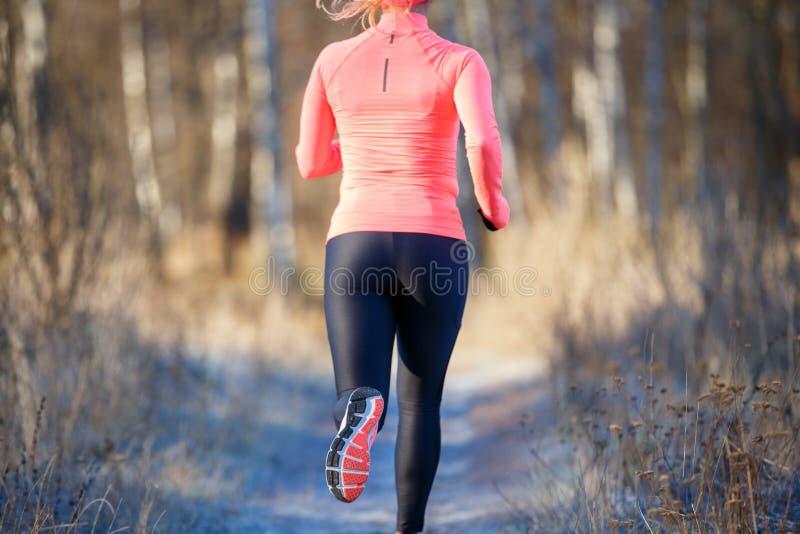 Vue arrière de la fillette en courant dans le parc d'automne le matin photographie stock libre de droits