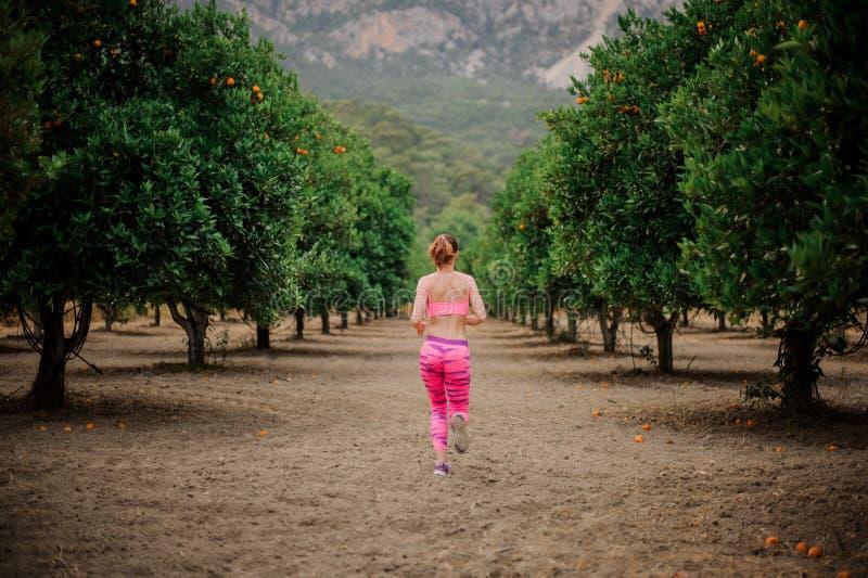 Vue arrière de la jeune femme mince courant parmi le tre orange vert images stock
