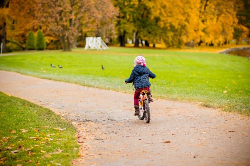 Vue arrière de petite fille montant une bicyclette en parc sur la route couverte d'arbres de chêne et d'érable d'automne Sain image stock