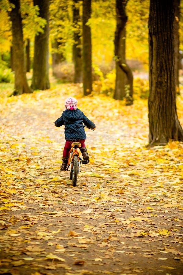 Vue arrière de petite fille montant une bicyclette en parc sur la route couverte d'arbres de chêne et d'érable d'automne Sain photos stock