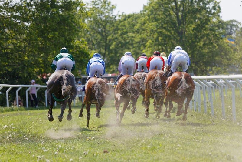 Vue arrière de tenir les jockeys colorés sur l'équitation de course dans une courbe photos stock