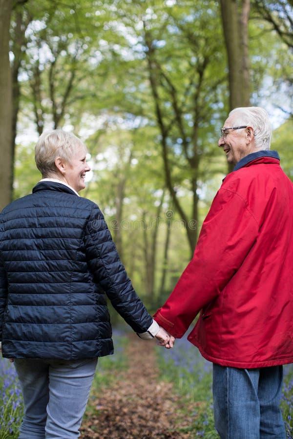 Vue arrière des couples supérieurs marchant de pair par la jacinthe des bois photo libre de droits