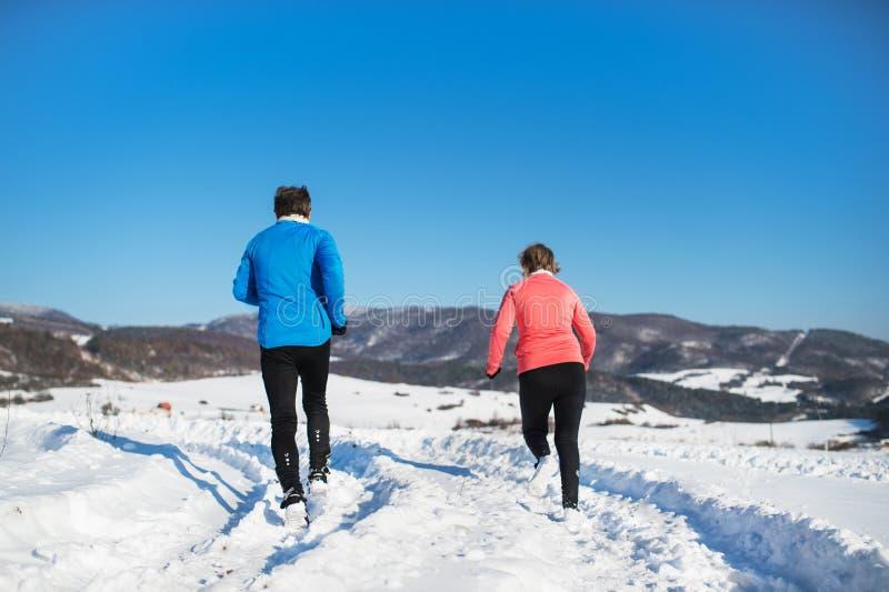 Vue arrière des couples supérieurs pulsant en nature d'hiver images libres de droits