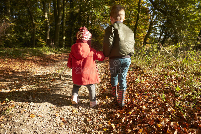 Vue arrière des enfants sur Autumn Walk In Woodland Together image stock
