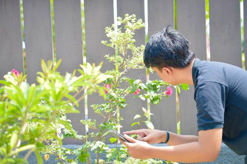 Vue arrière du travailleur de sexe masculin asiatique faisant de la recherche à la ferme de jardin utilisant le PC de comprimé Co photo libre de droits