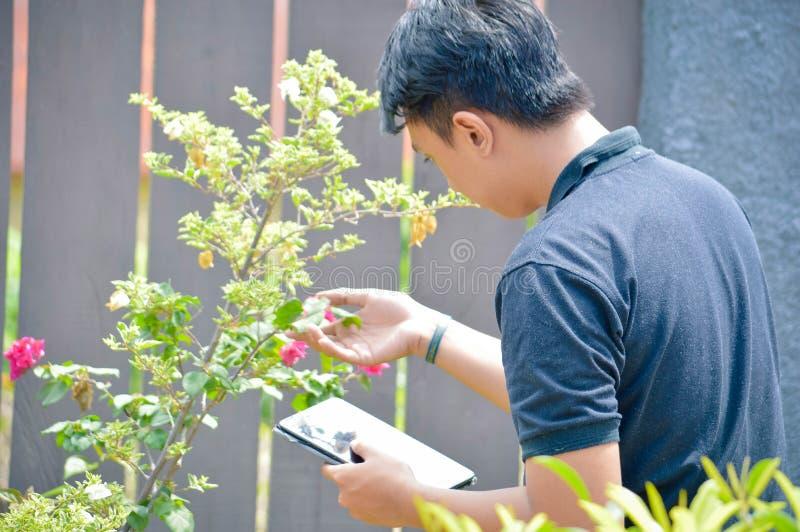 vue arrière du travailleur de sexe masculin asiatique de jardinier ou de fleuriste faisant de la recherche à la ferme extérieure  photo libre de droits