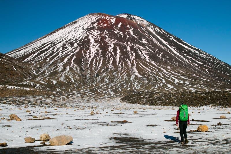 Vue arrière du voyageur de personne trimardant et marchant à pas marqués avec le sac à dos en montagnes du ` s du Nouvelle-Zéland photos libres de droits