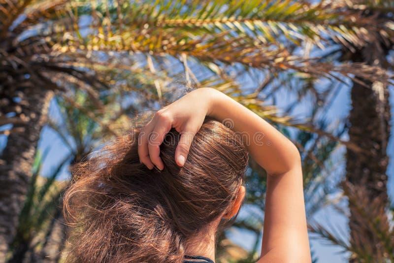 Vue arrière sur la fille avec les cheveux débordants marchant dans les îles des Seychelles de forêt de paume photos stock