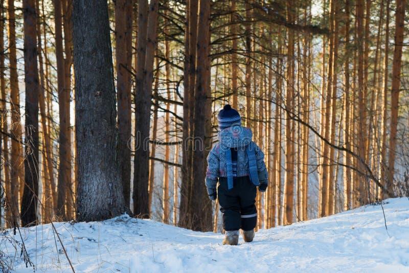 Vue arrière sur le petit garçon mignon d'enfant en bas âge dans le snowsuit chaud marchant en parc un jour d'hiver Extérieur d'en photo stock