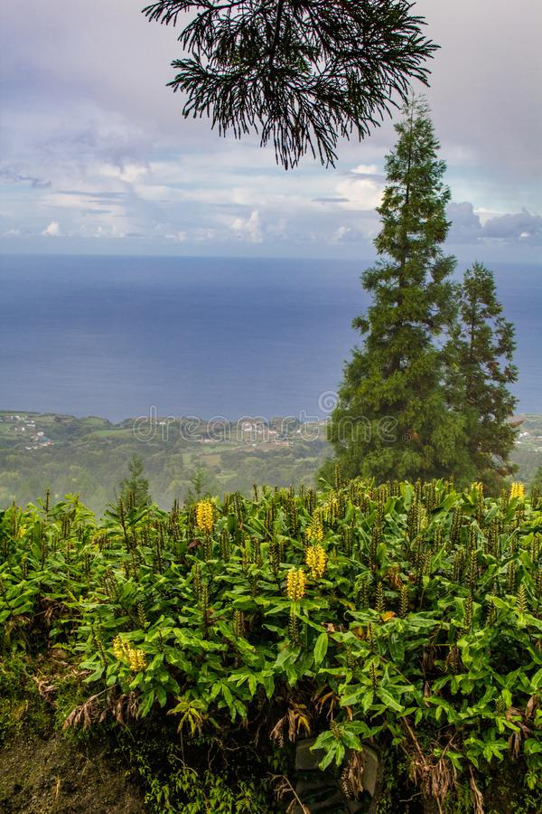 Vue au-dessus d'île nuageuse de sao Miguel Island, Açores, Portugal photographie stock