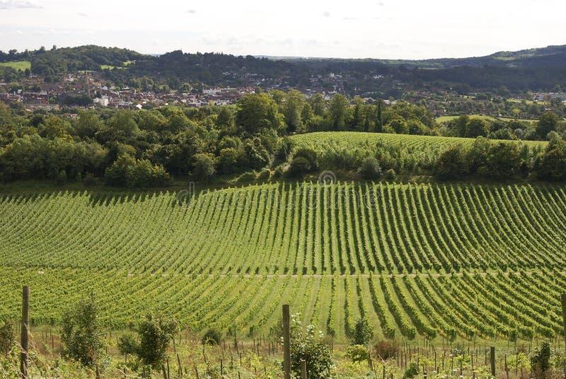 Vue au-dessus de Dorking. Surrey. l'Angleterre photographie stock libre de droits