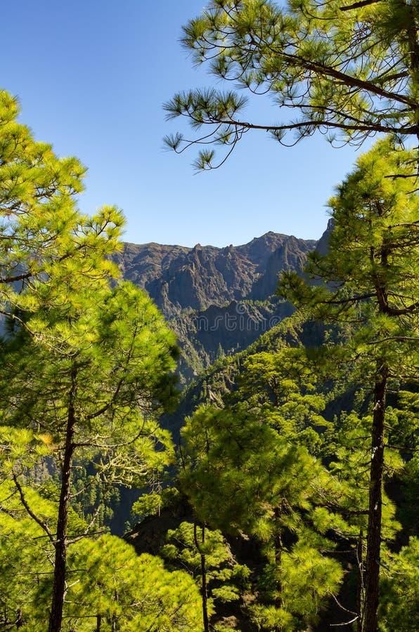 Vue au-dessus de La Palma, Caldera de Taburiente photo stock
