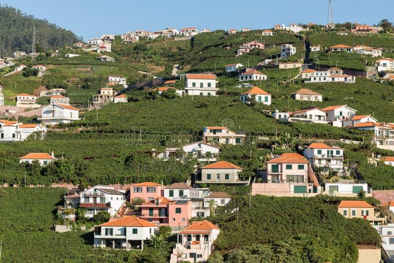 Vue au-dessus des vignobles de la Madère Wine Company, Estreito De Camara de Lobos, Madère, photos stock