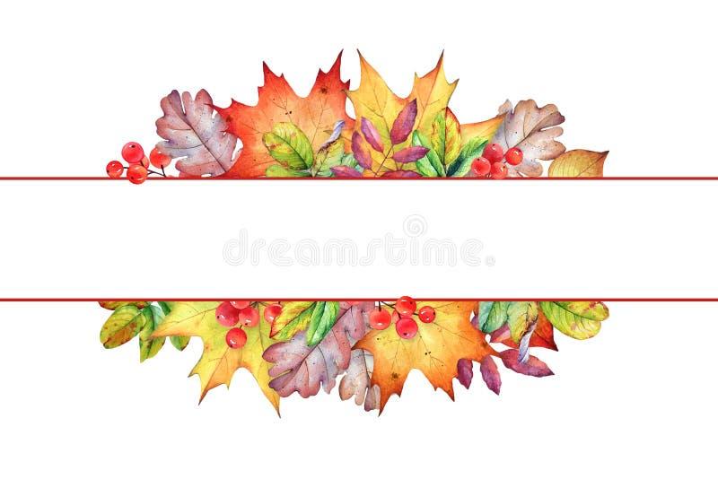 Vue avec des feuilles et des baies d'automne d'aquarelle illustration libre de droits