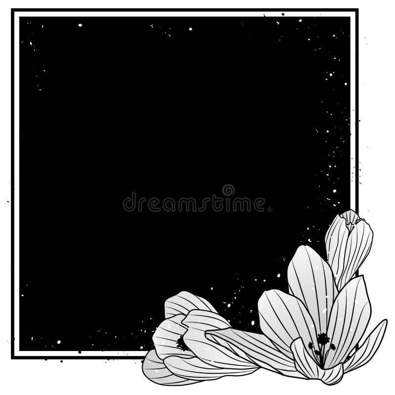 Vue avec des fleurs de crocus illustration stock