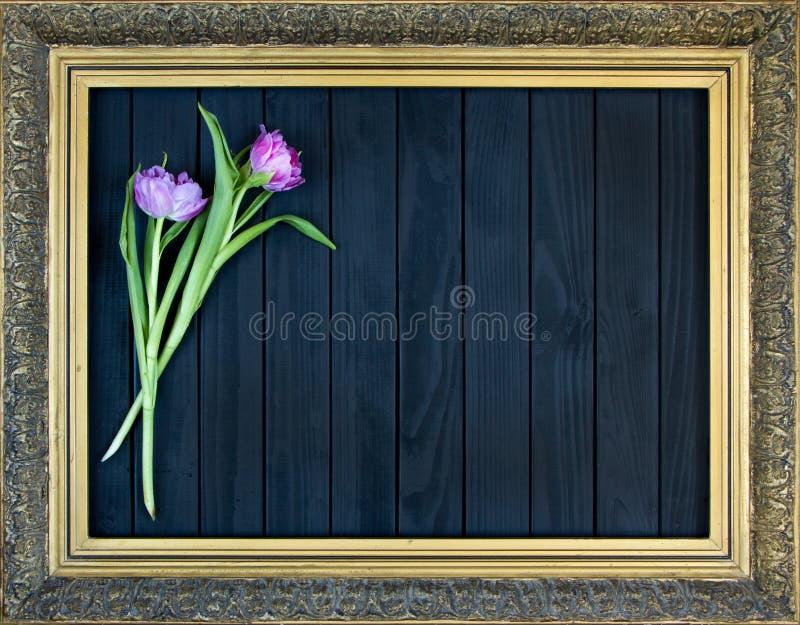 Vue avec l'image florale de motif, bouquet de belles tulipes roses sur le fond noir, style antique photographie stock