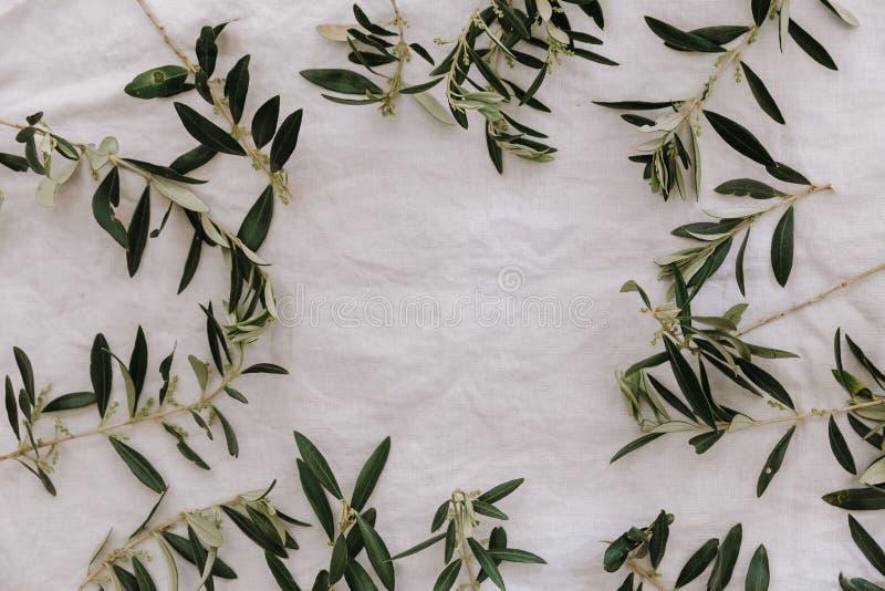 Vue avec la branche d'olivier au-dessus de la toile images stock