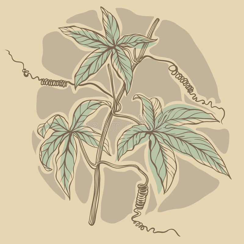Vue avec les fleurs tirées par la main illustration stock