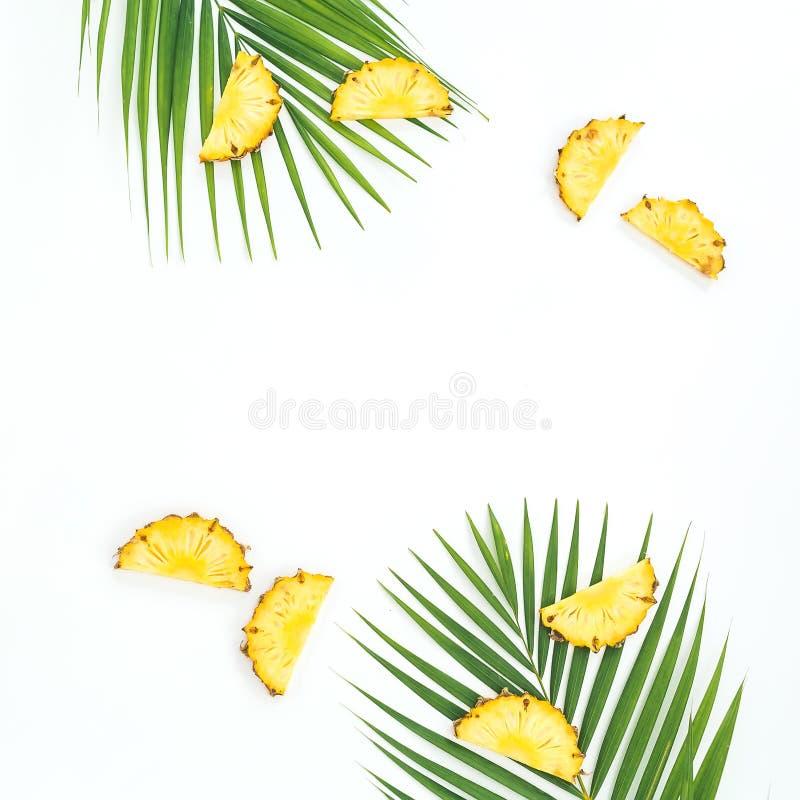 Vue avec les fruits et les palmettes coup?s en tranches d'ananas sur le fond blanc Configuration plate images stock