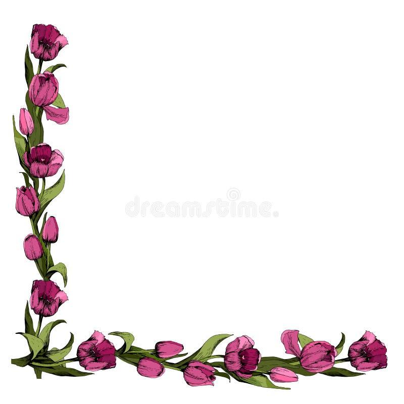 Vue avec les tulipes roses color?es Humeur de source Conception des mat?riaux imprim?s Illustration illustration libre de droits
