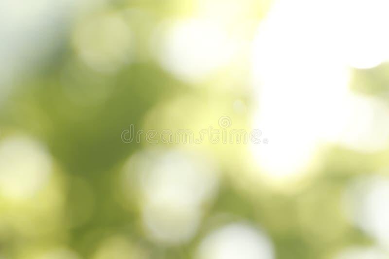 Vue brouill?e de fond vert abstrait Effet de Bokeh image stock