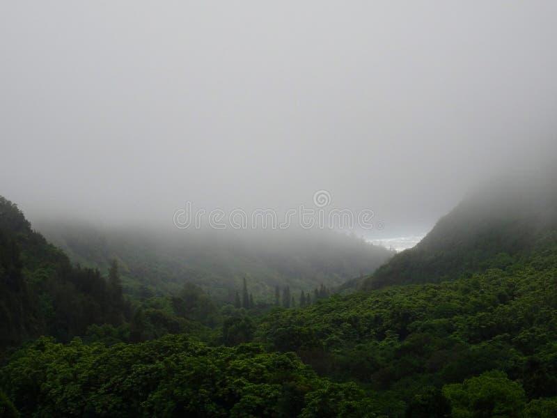 Vue brumeuse sur l'océan du parc d'état de vallée d'Iao, Hawaï image libre de droits