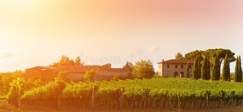 Vue classique de paysage scénique de la Toscane images libres de droits