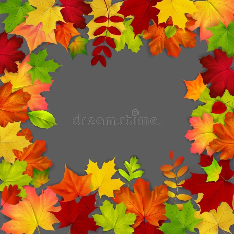 Vue composée de lames d'automne colorées illustration de vecteur