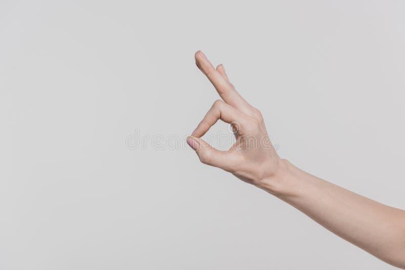 vue cultivée de main femelle montrant le signe correct photographie stock libre de droits