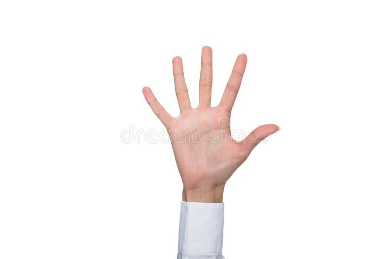 Vue cultivée de personne faisant des gestes la langue signée ou montrant le signe cinq images stock