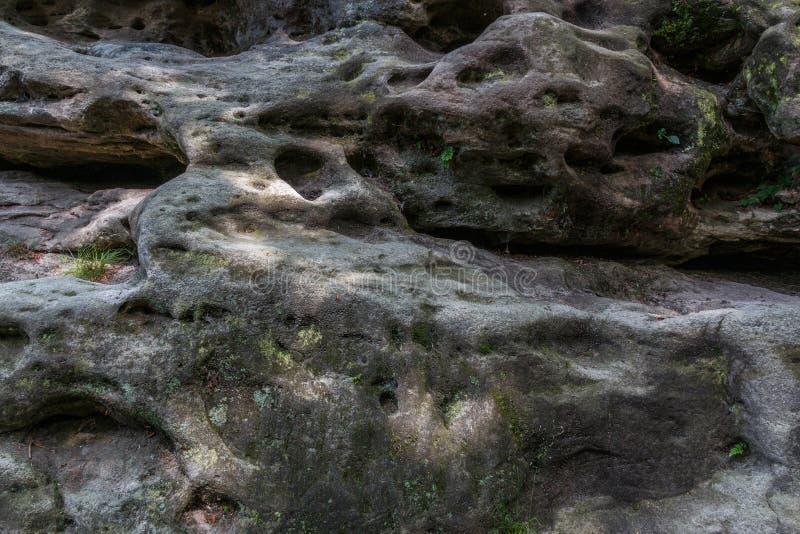 Vue détaillée de la pierre naturelle dans les montagnes de Sandstone d'Elbe photographie stock libre de droits