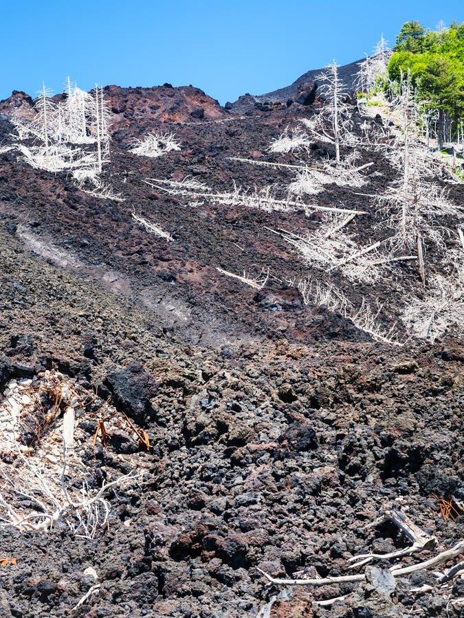 Vue d'écoulement de lave durci sur la pente de l'Etna image libre de droits