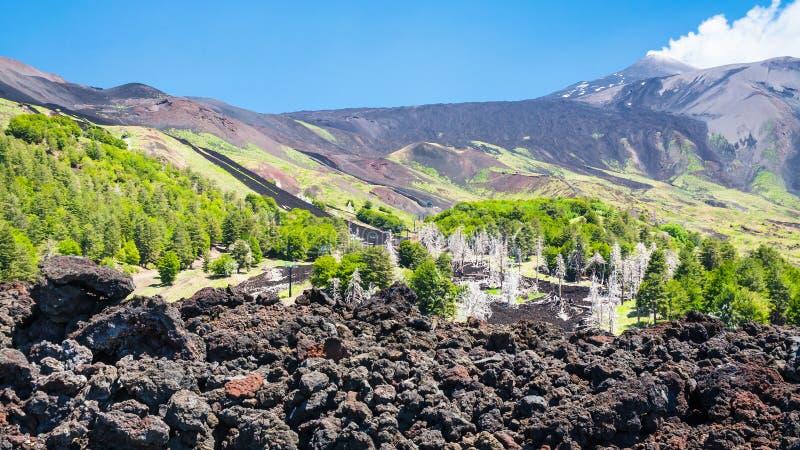 Vue d'écoulement de lave durci sur la pente du bâti de l'Etna image stock