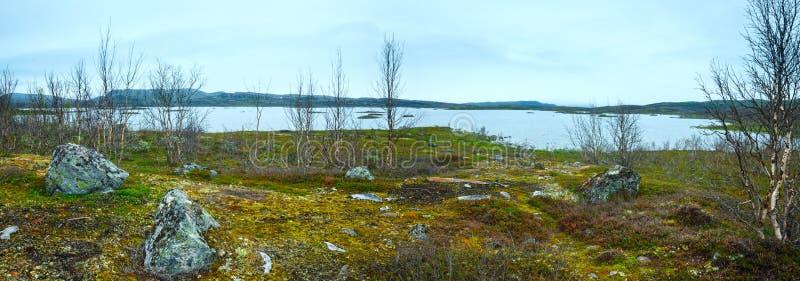 Vue d'été de lac Tornetrask (Laponie, Suède) image libre de droits