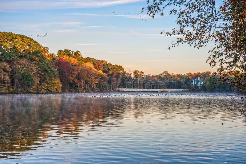 Vue d'étang de début de la matinée photographie stock libre de droits