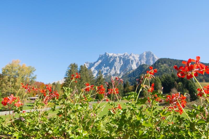 Vue d'Alpes de Zugspitze d'Ehrwald, le Tirol, Autriche photographie stock libre de droits